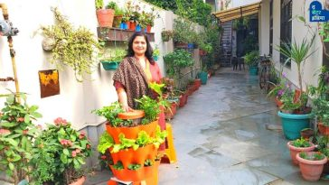 Gardening Expert