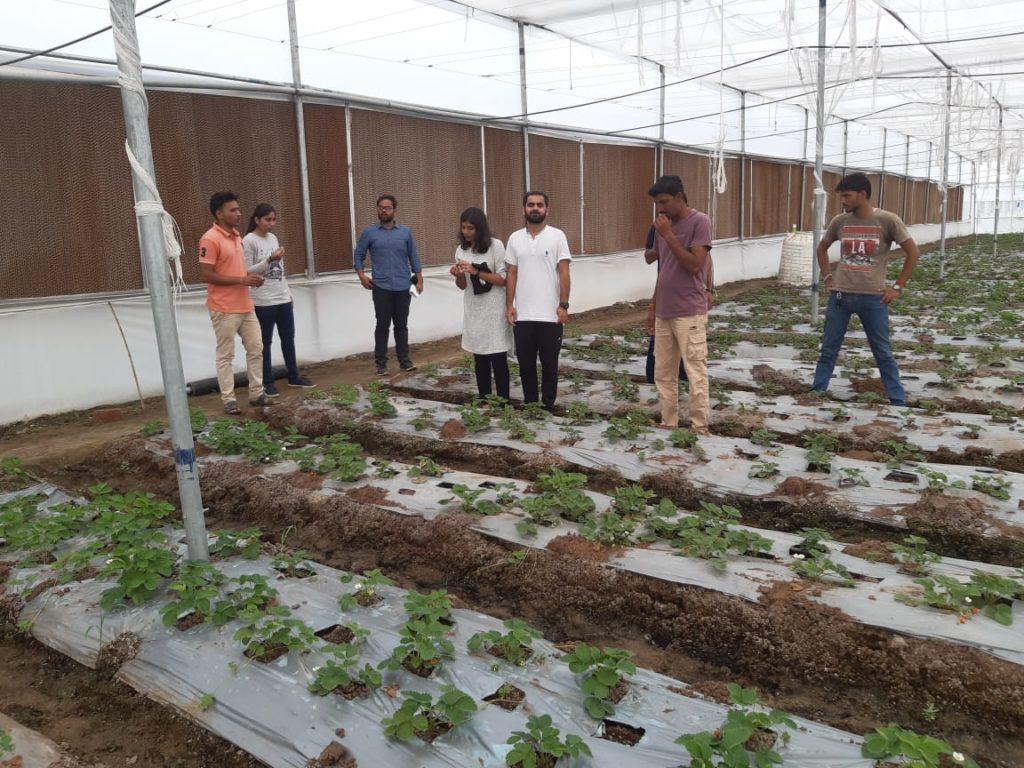 Engineer turned farmer Ritesh Patidar