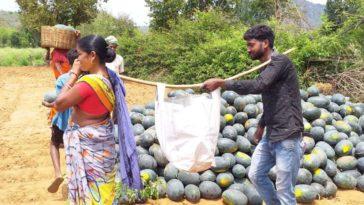 Jharkhand Farmers Gets Benifit