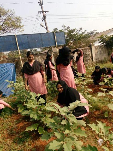 Kerala farmer self sustaining