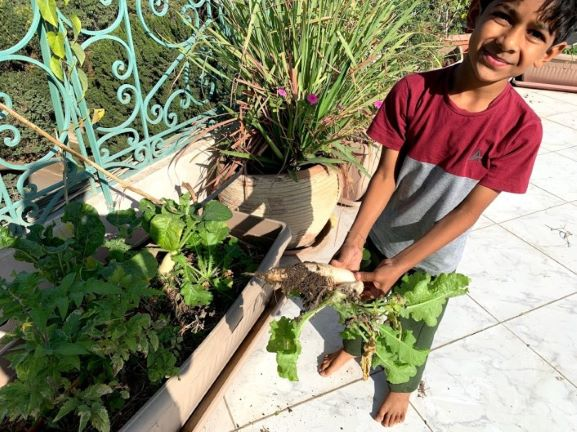 How to grow multiple veggies