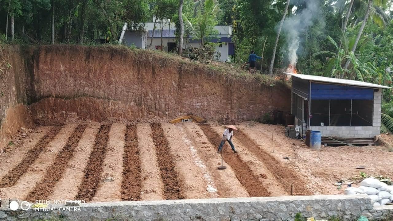 Kerala Neighbours Growing Vegetables