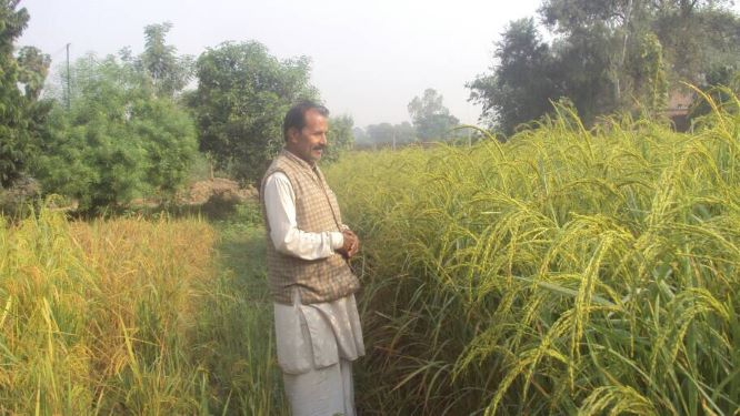 Farmer Scientist