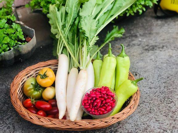 Woman Organic Farmer