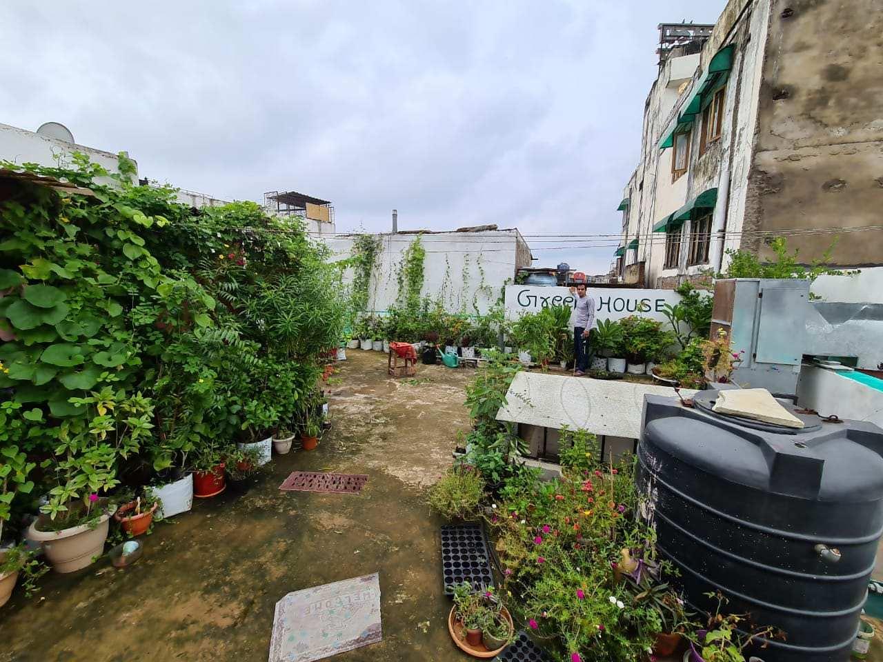 Terrace Gardening
