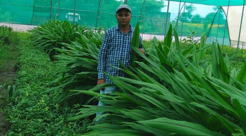 Maharashtra Farmer Dhananjay Raut