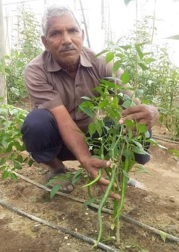 Ex-Army Man Turns Organic Farmer