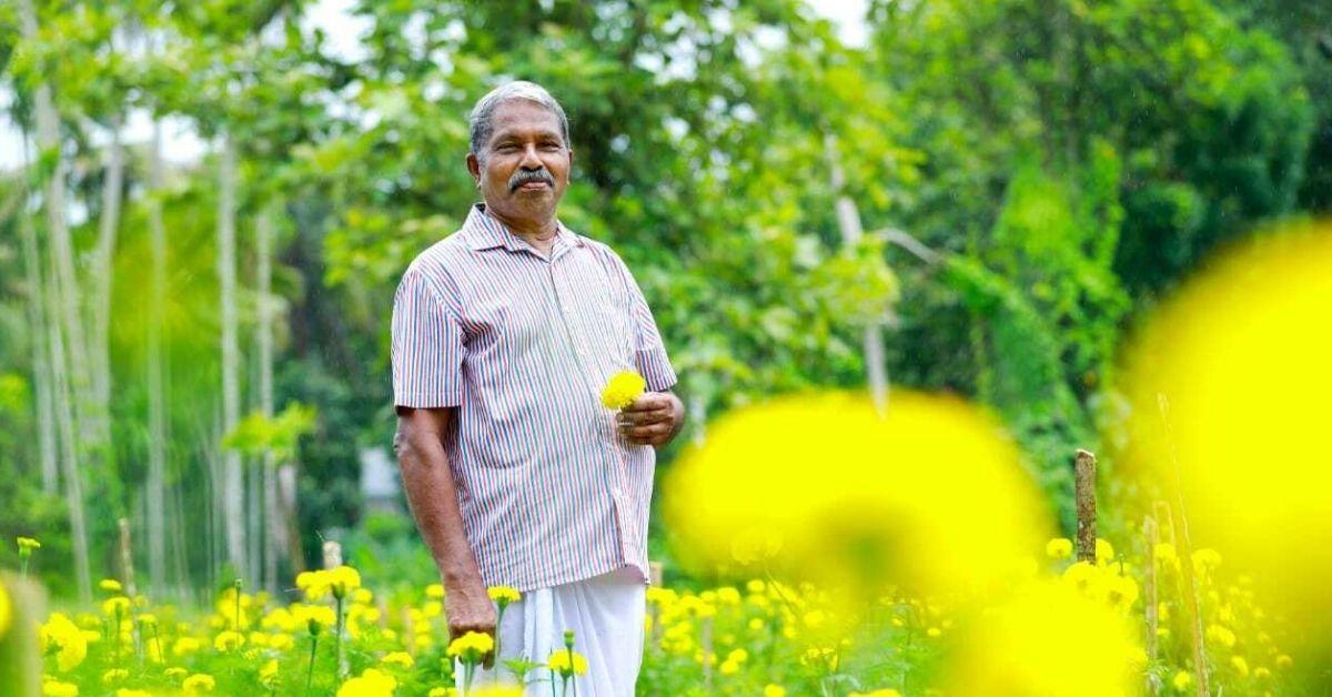 Kerala Marigold farming