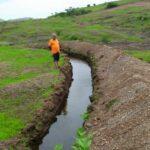 rain water harvest