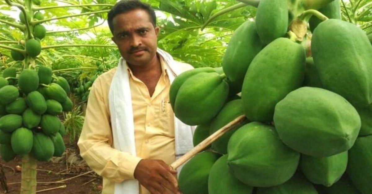 Organic Farmer Earns Lakhs