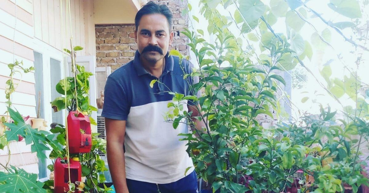 terrace gardening tips