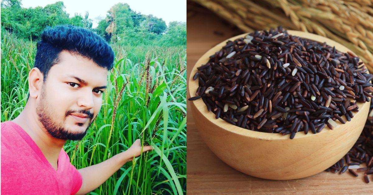 black rice farming