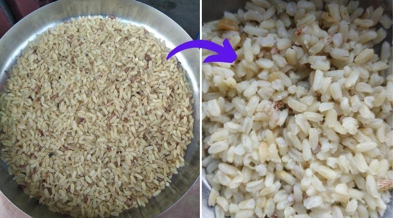 Magic Rice Farming