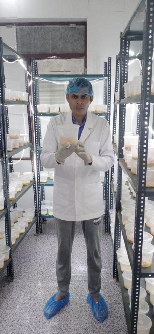 Haryana Farmer