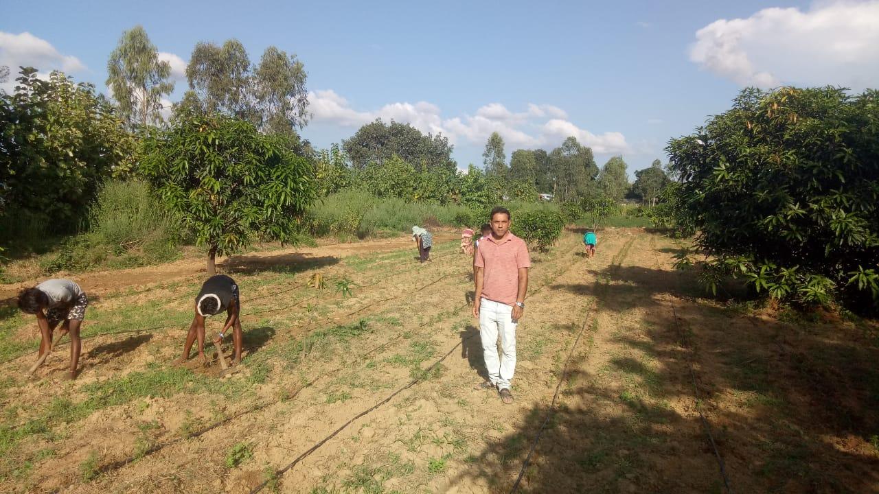 Odisha Organic Farmer