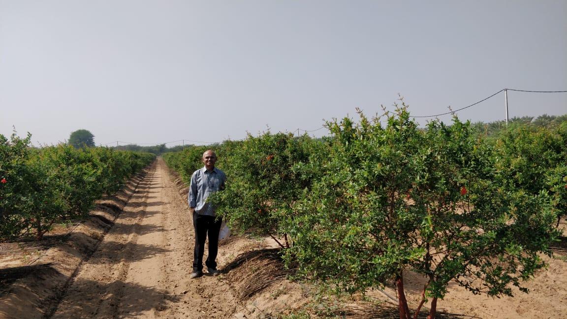Gujarat Farmer
