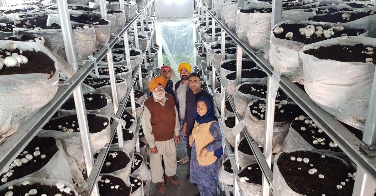 Punjab Farmer